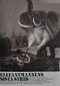 A. Wahlbers elefant kopia